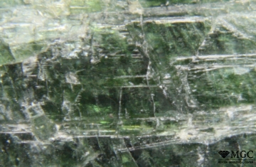 Cr-tremolite with talc inclusions (Emerald mines, the Urals). View Mode - reflected light